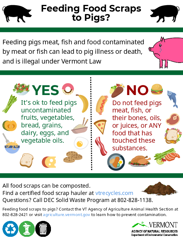 Vermont Agency of Natural Resources handout about feeding food scraps to pigs
