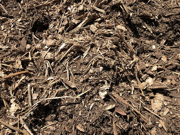 Coarse wood chip mulch